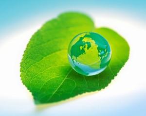 world-globe-eco-green-leaf-1000-e1298299956894